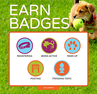 screen shot of gamification earn badges page